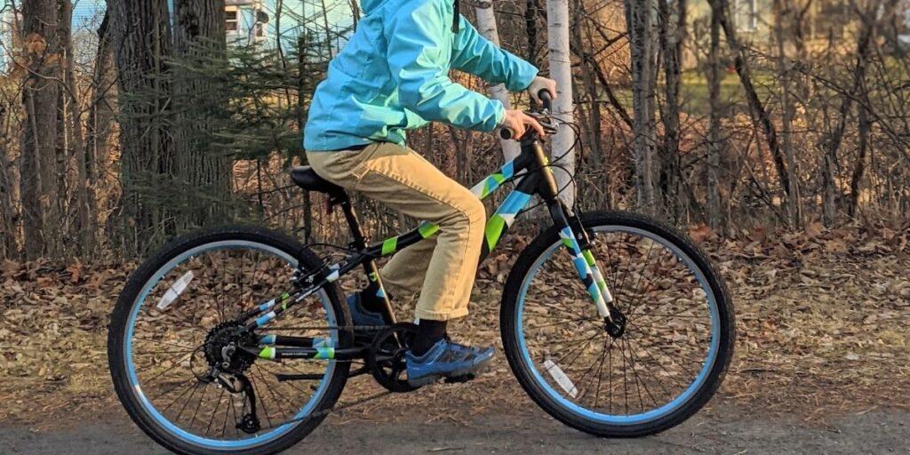 Guardian Bikes Original